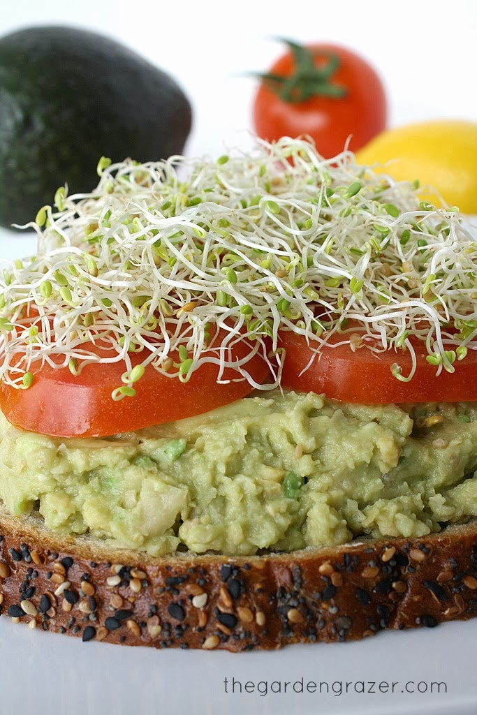 Chickpea Avocado Mash