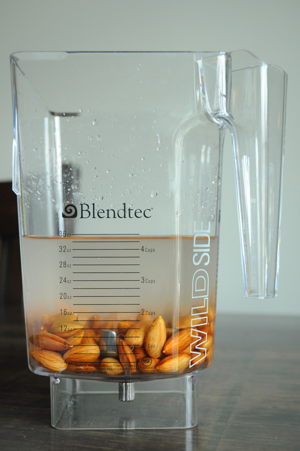 Almonds-in-Blender