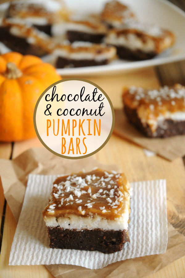 Chocolate-Pumpkin-Coconut-Squares