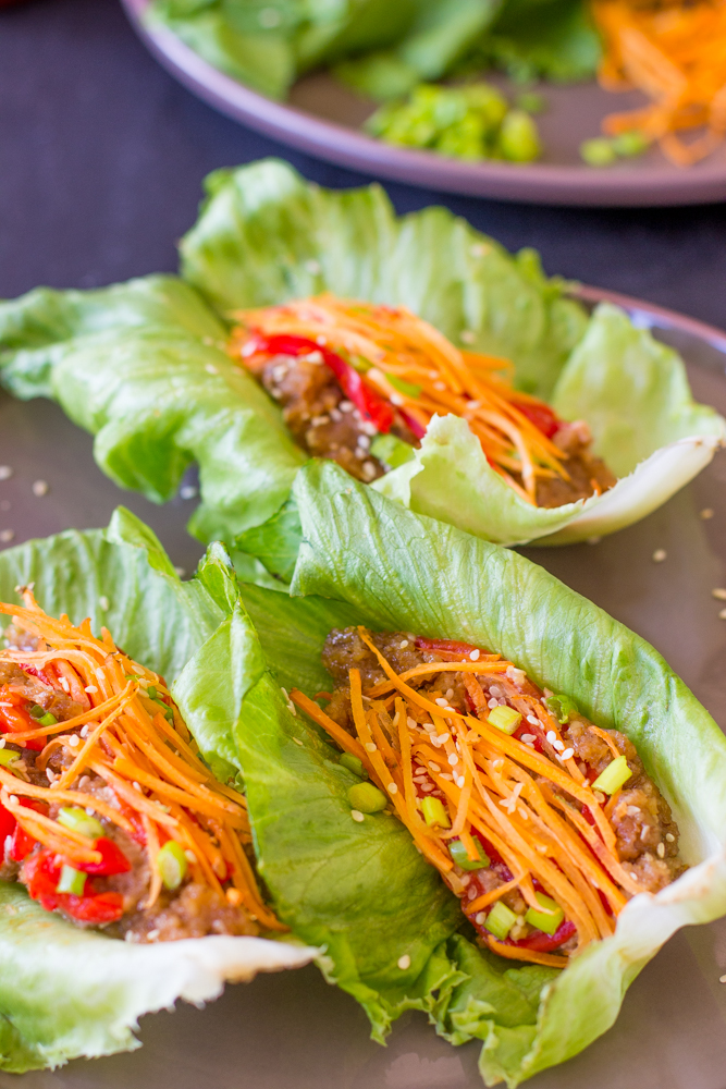 Asian Lettuce Wraps Pic